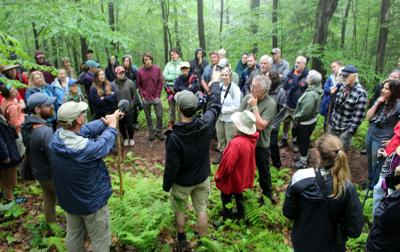62nd annual Allegany Nature Pilgrimage will be virtual due to coronavirus