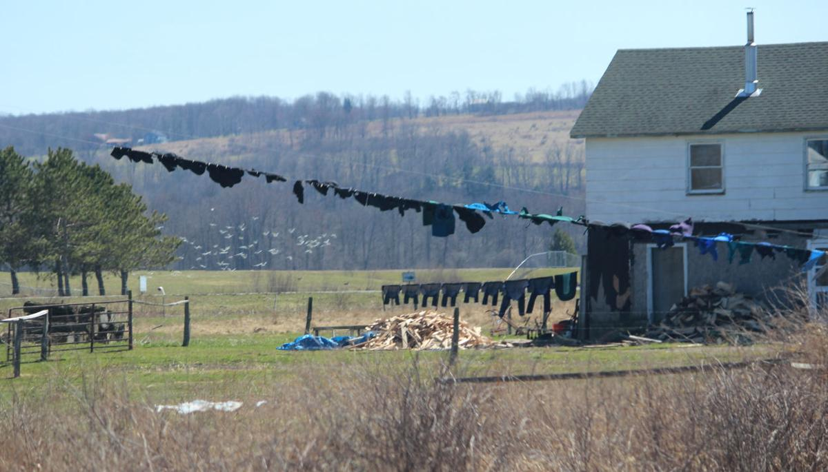 Photos from a drive through Cattaraugus County's Amish Country