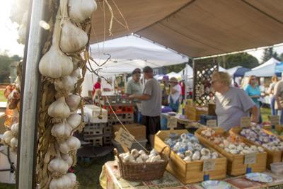 2016 Garlic Festival