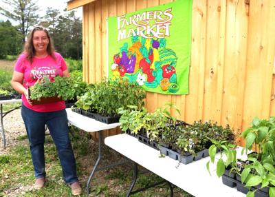 Centerville woman building on farmers market sales to open store