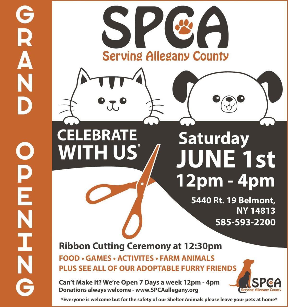 SPCA Serving Allegany | Ads To Go | oleantimesherald com