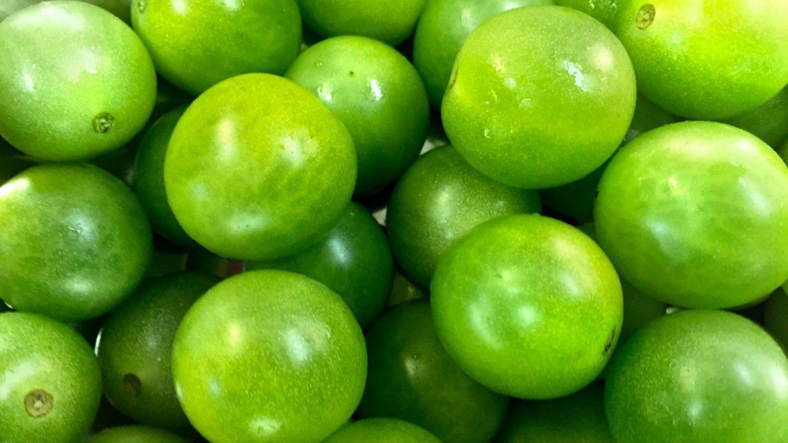 attitudes toward green tomatoes