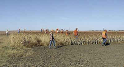 2011 youth pheasant hunt