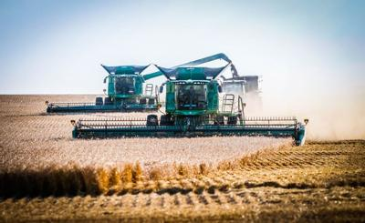 Harvest is in full production and Justin Hinckley asked photographer LaJena Gruis to capture scenes south of Onida.