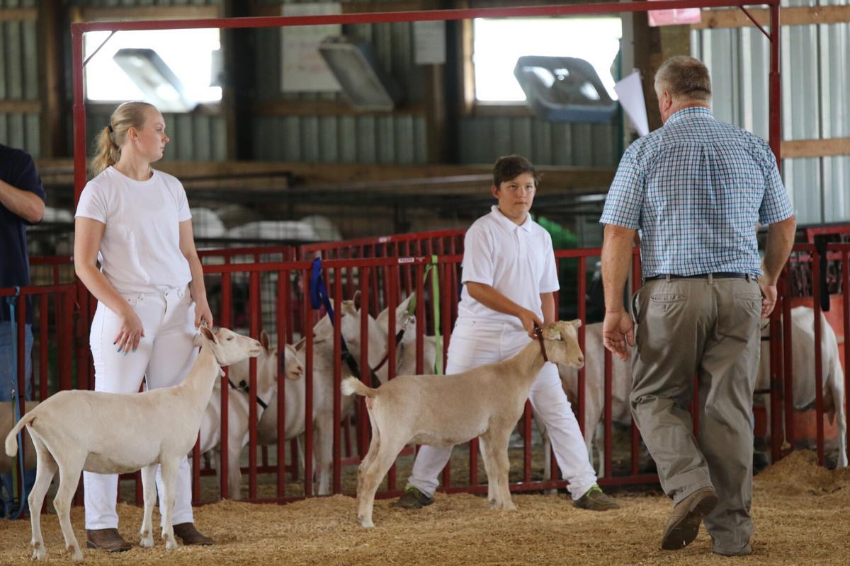 Marion County Fair 1