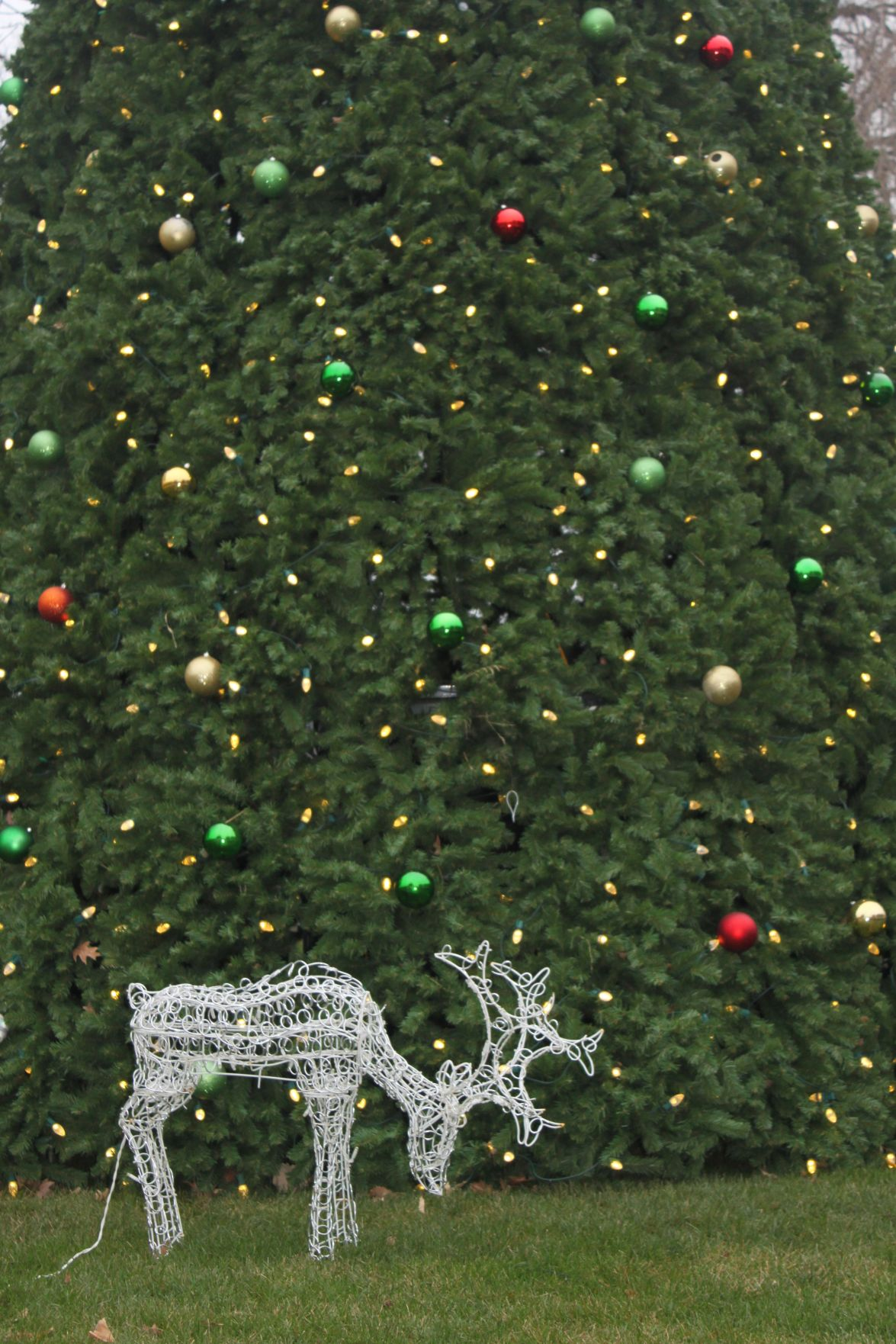 Christmas in July: No snow in sight | Local News | oskaloosa.com