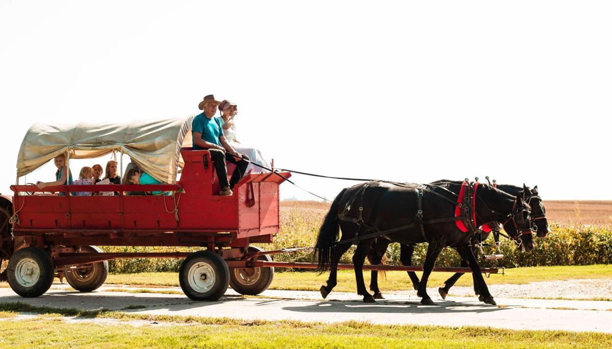 Nelson fall fest - wagon ride