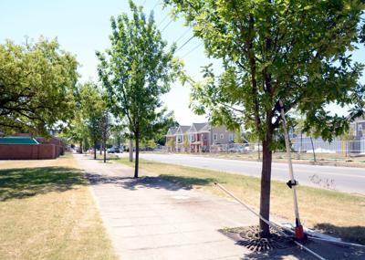 DEC to investigate area east of Harbor View Square