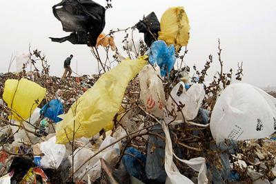 As plastic bag ban nears, city businesses seek alternatives