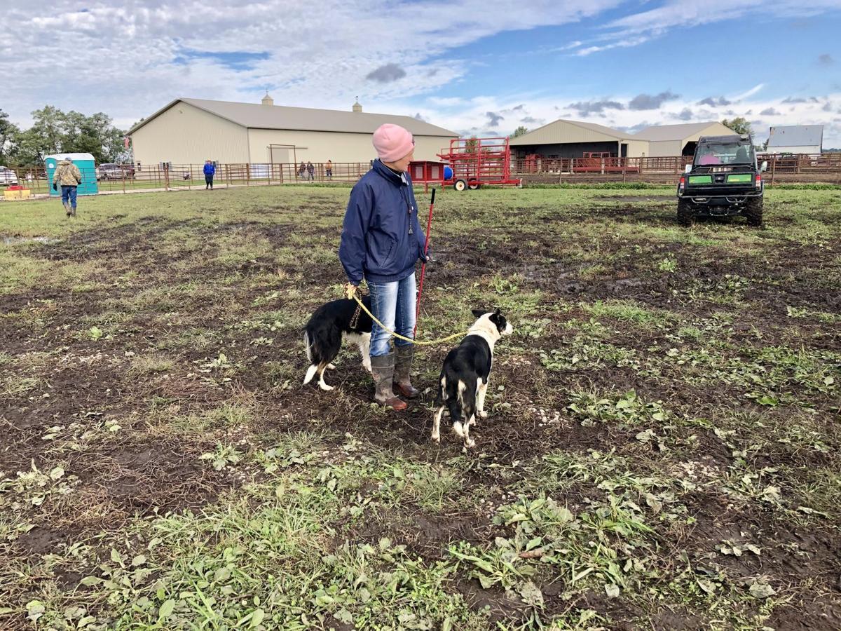 USBCHA dog trials