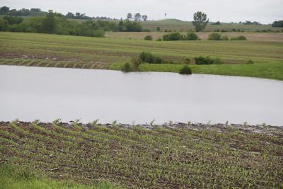 Eldon flooded field