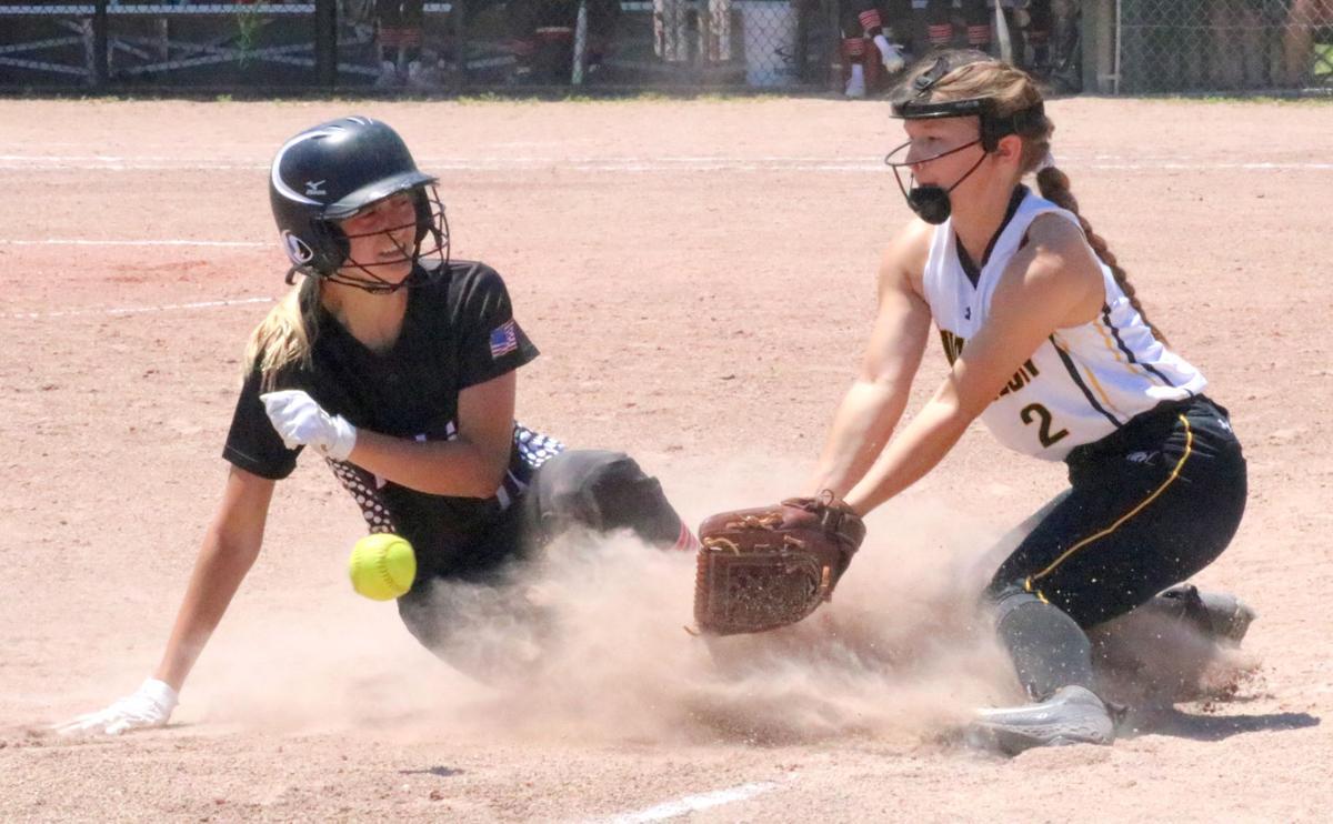 Prep softball: Panthers bid for title falls short