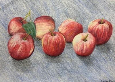 amber_burroughs-_apples.jpg