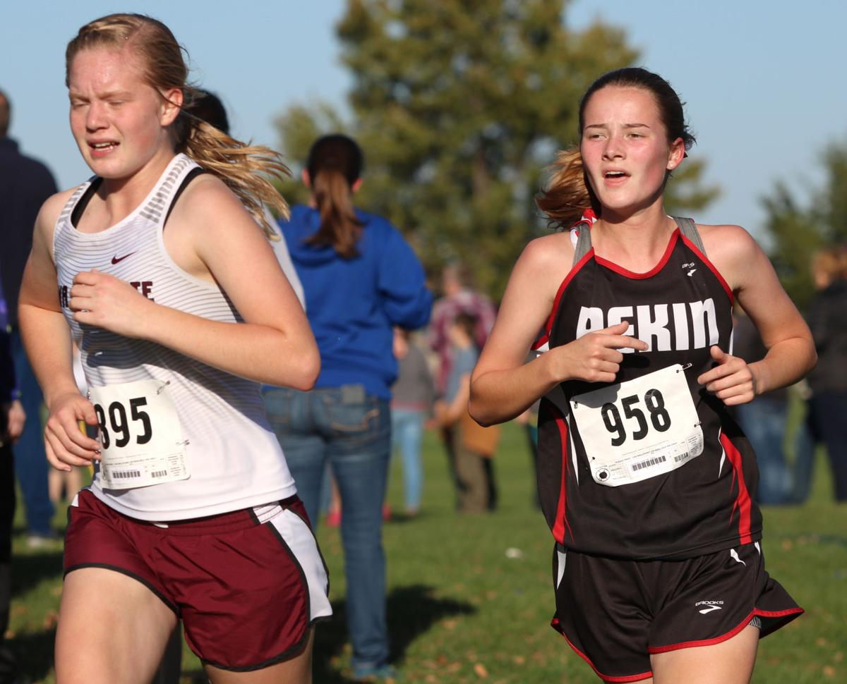 Girls state cross country: Bloomquist prepares for final race