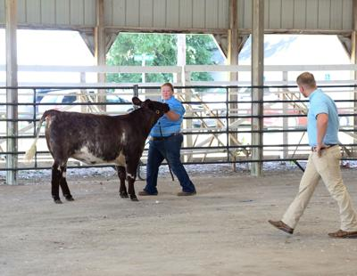 Anthony Hansen, right, judges the Wapello County Fair Beef Show Sunday.