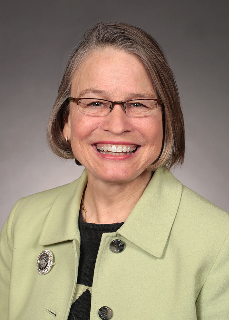 State senators, reps endorse Miller-Meeks