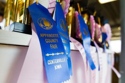 Appanoose County Fair