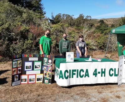 Pacifica 4-H Club at open house, Elkus Ranch, Half Moon Bay.