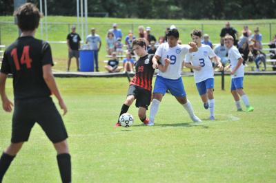 Jolly's hat trick leads Trigg over Graves