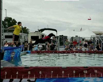 Local boy-dog duo take plunge to compete in dock jumping