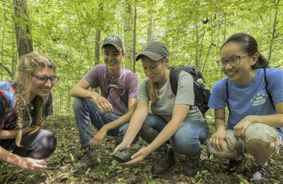 Murray State students build GPS trackers to locate box turtles