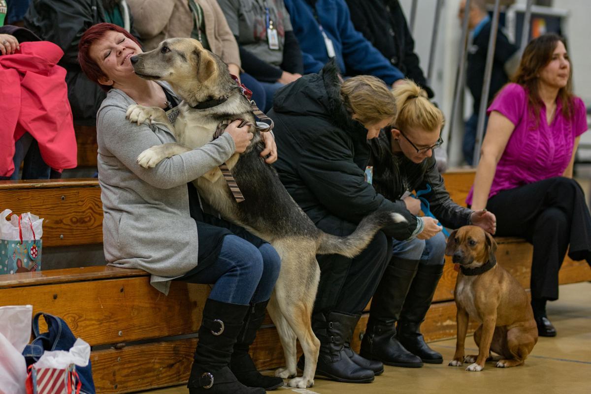 121919_PS_Shawnee dogs Slideshow-17.jpg