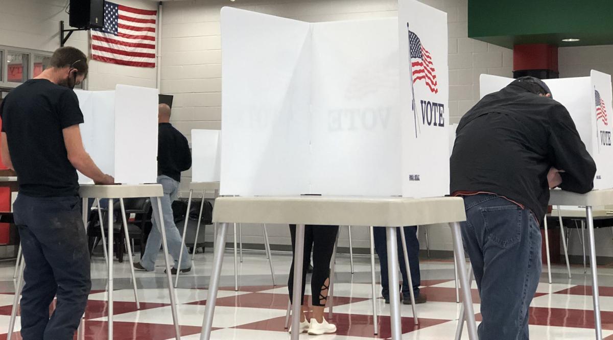Voting photo