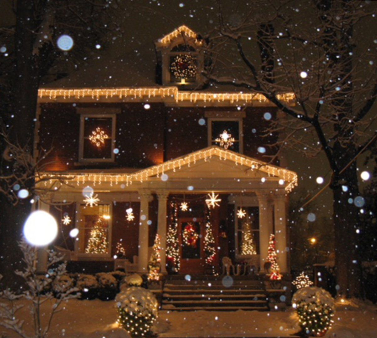 Area Christmas Light Displays