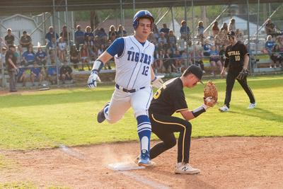 Golden Eagles,  Tigers among the state's leaders on the diamond