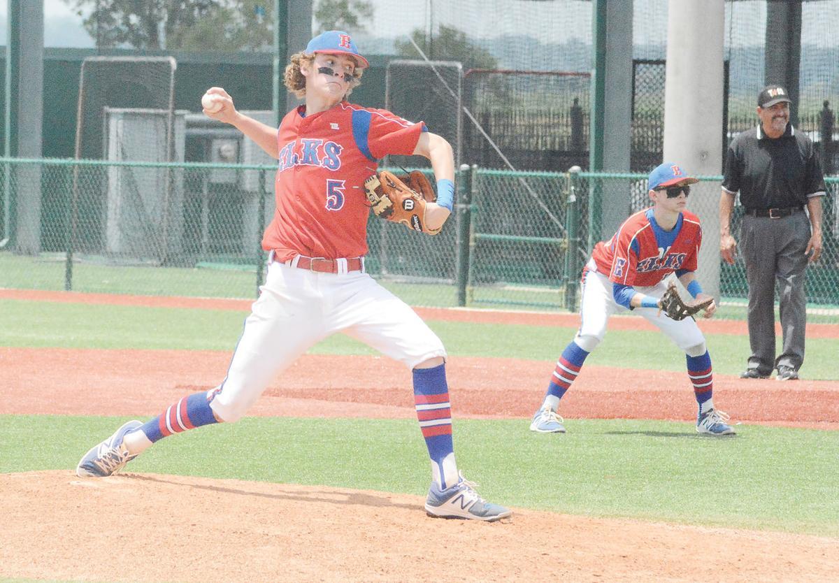 Elkhart pitcher Bryson Adair