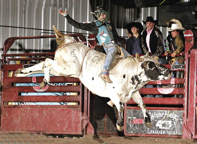 Gay bull riders Scattered Thoughts and Rogue Words