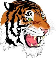 NECHES Tiger