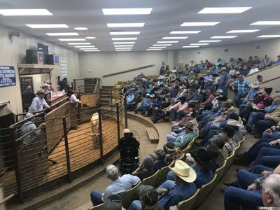Anderson County Livestock Exchanged