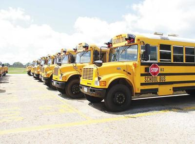 Buses ready to go