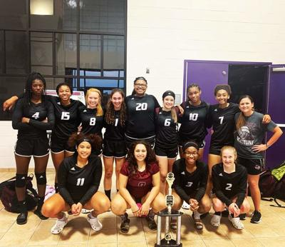Ladycats Volleyball