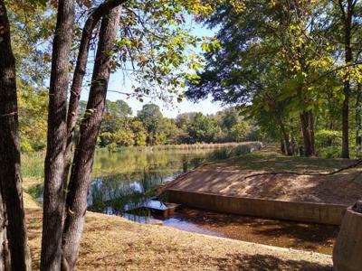 lake grants