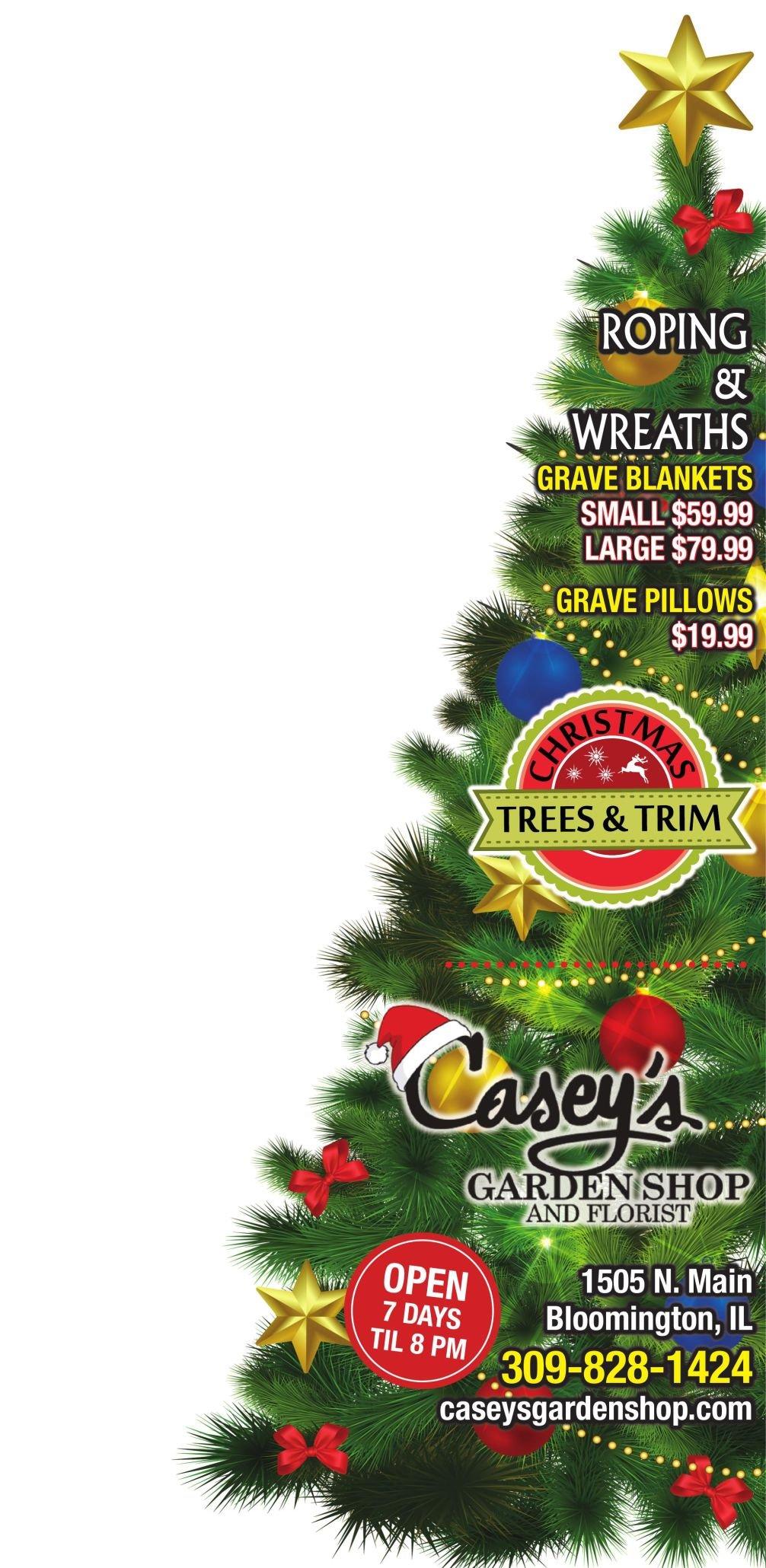 Caseys Garden - Creative Shape Christmas Tree