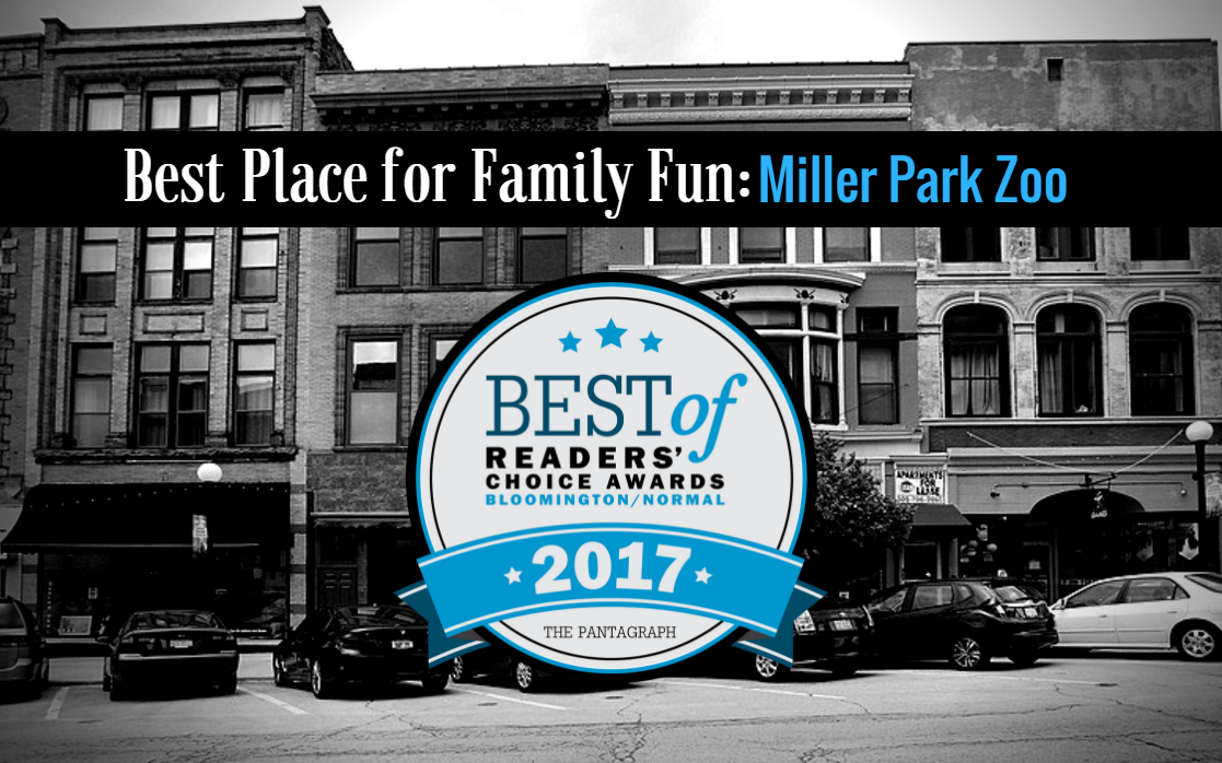 Best Place for Family Fun Image