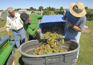 Central Illinois wine trail to lose one of its key stops