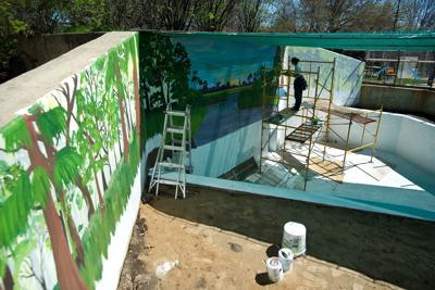 Zookeeper turned artist adds color to Miller Park Zoo's new alligator exhibit