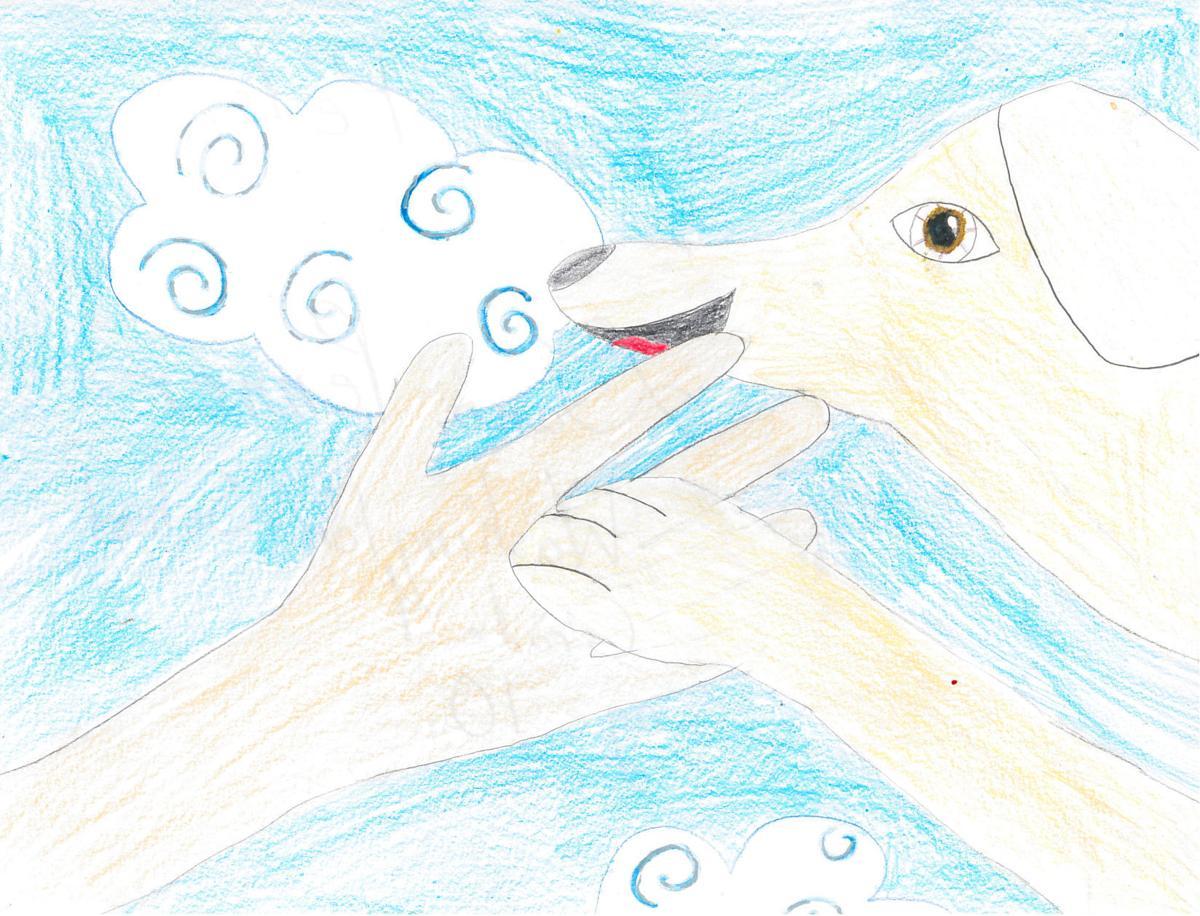 Dana Penner, grade 4, Washington