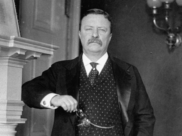 17 presidents who have been to Central Illinois   News ... Theodore Roosevelt Grant