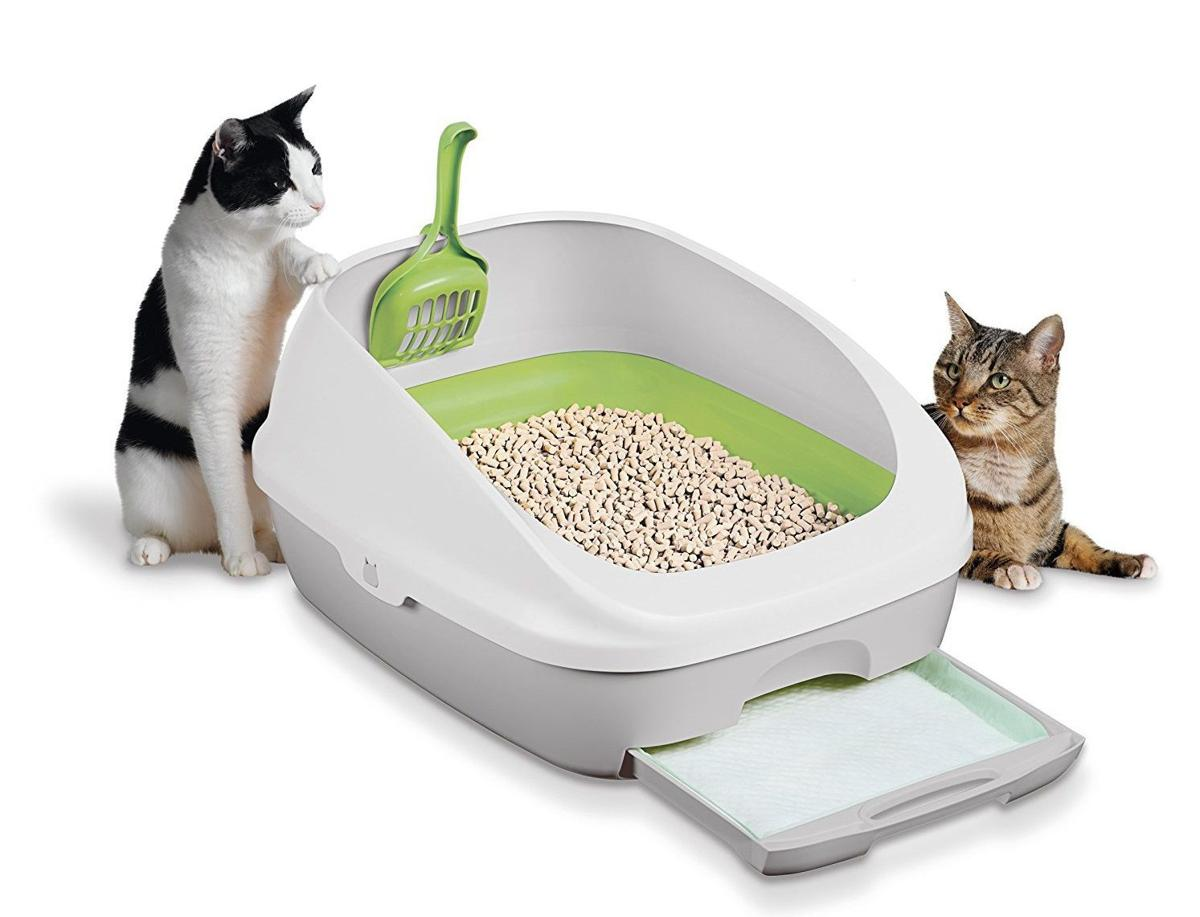 The Best Odor Free Cat Litter Boxes Home Amp Garden