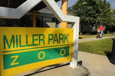Volunteer at Miller Park Zoo
