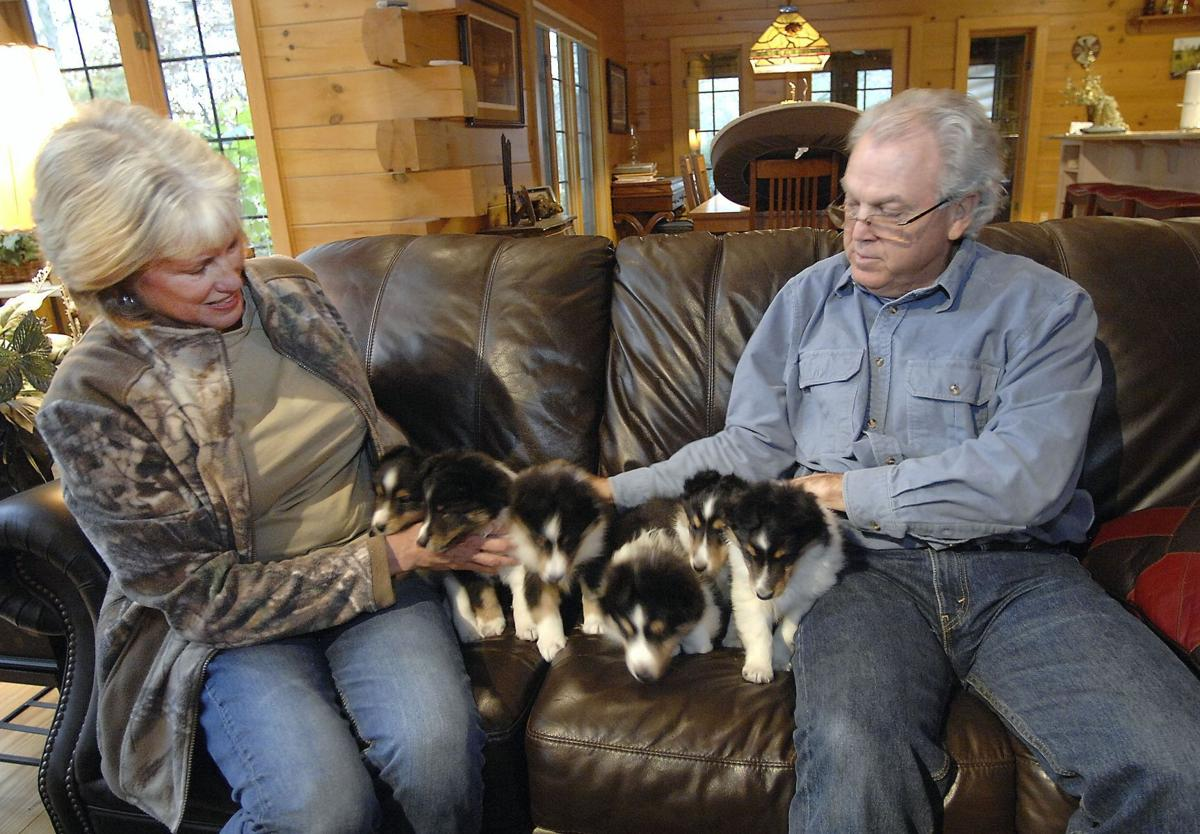 Mackinaw couple thankful for puppy's new lease on life