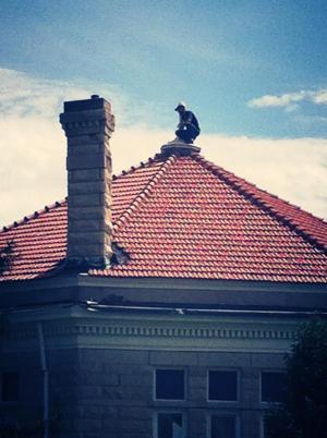 Star roof 3.jpg