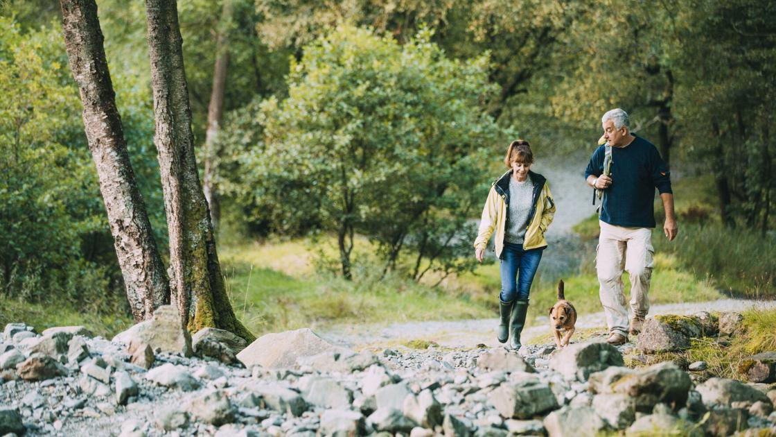 6 reasons to keep your dog leashed on hiking trail