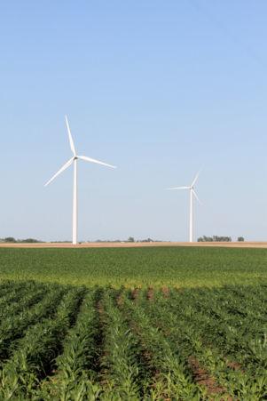 Those wind turbines