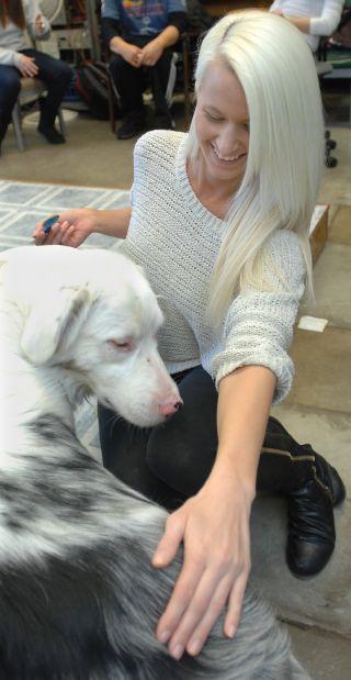 Canine behavior 1