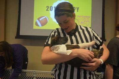 Puppies Score Big At Puppy Bowl Local News Pantagraphcom